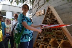 Bienen-Hotel PHT Eröffnung