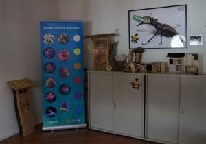 Wildbienen-Nisthilfen