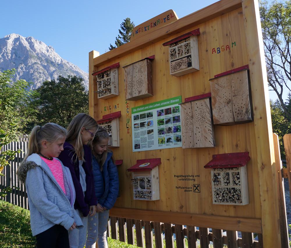 Wildbienenanlage In Absam Eröffnet
