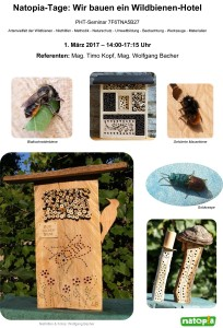 Wildbienen-Seminar