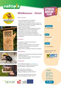 Wildbienen-Unterricht
