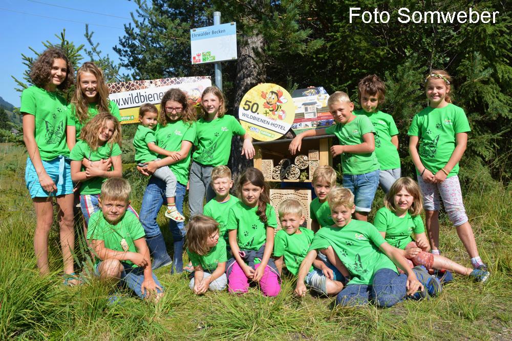 50. Tiroler Wildbienenhotel Eröffnet!