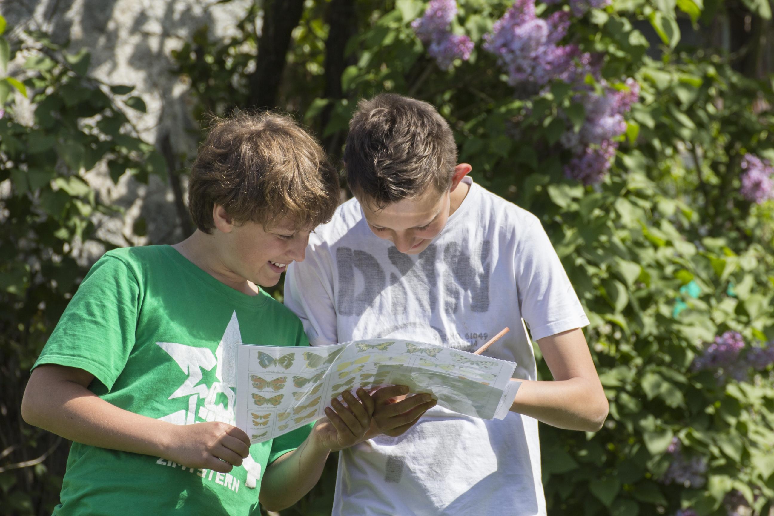 Jugendliche Beim Beobachten Von Tagfalter.