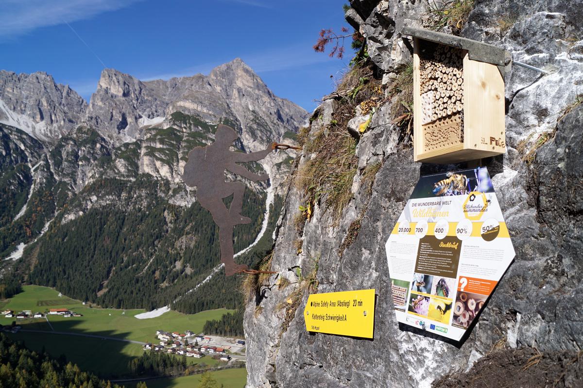 St Jodok Klettersteig : Wildbienen nisthilfen am klettersteig natopia projekte