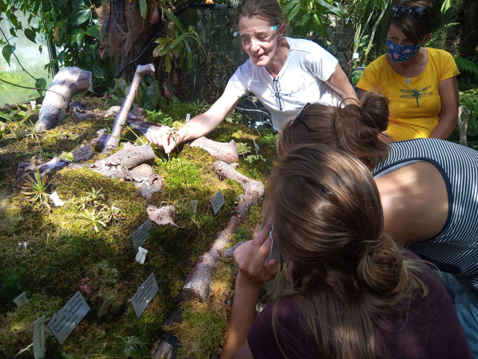 Der Tiroler Naturführerkurs Kann Endlich Starten – Gruppe 2 Im Botanischen Garten, 4. Juli 2020