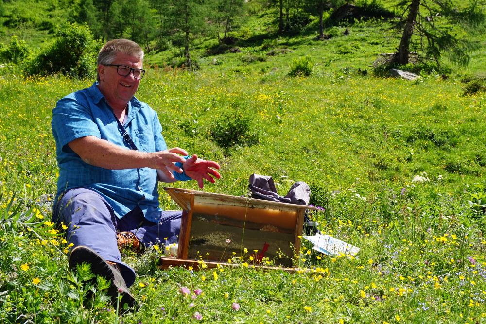 """Nationalpark Hohe Tauern – 1. Bis 4. Juli 2021 – """"Gebirge"""""""