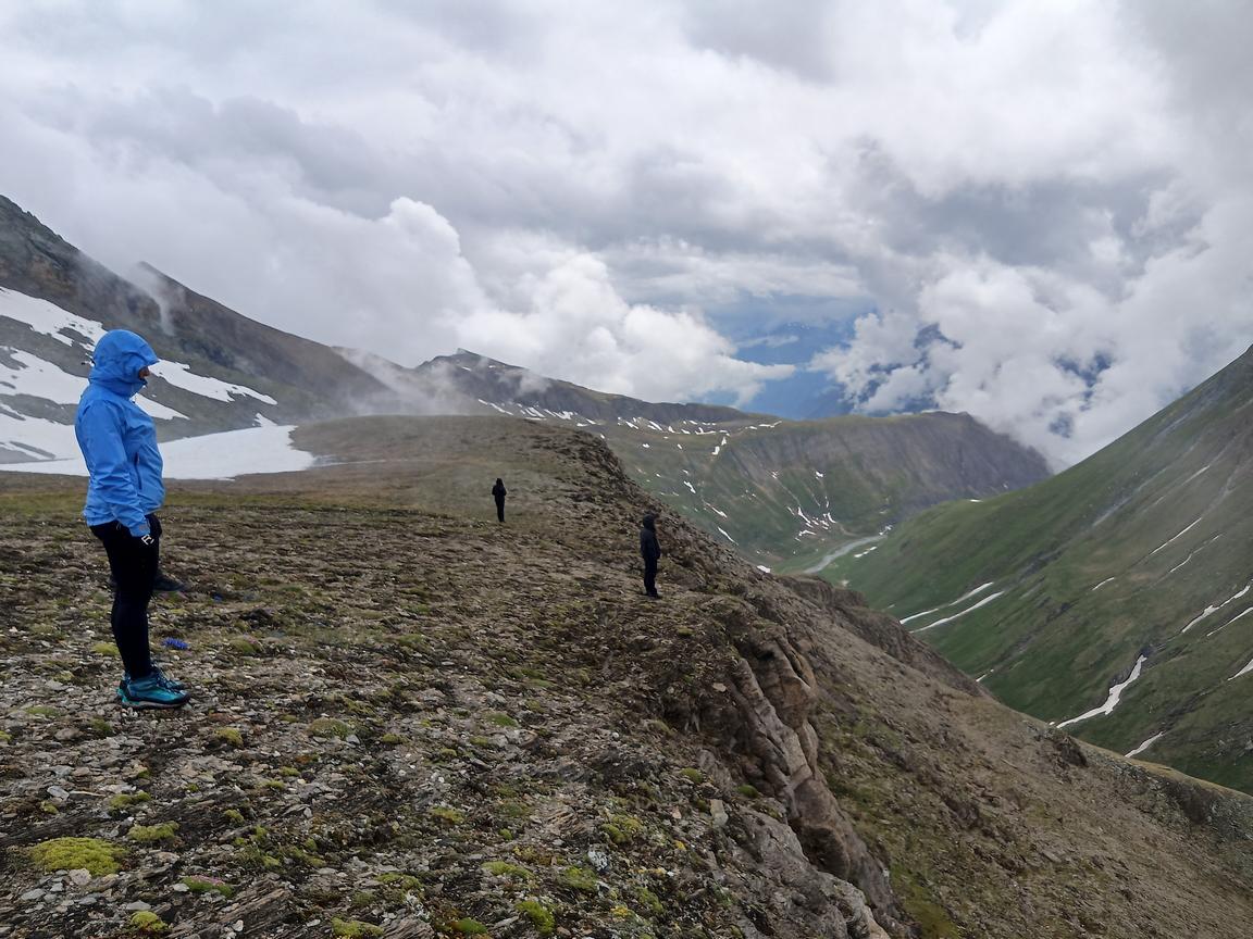 Überlebenskünstler Am Großglockner  – Tiroler Naturführerkurs 2021 Im Nationalpark Hohe Tauern