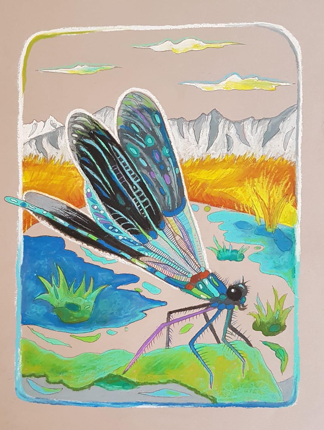 Kunst Und Klimawandel Am Reither Moor Bei Seefeld